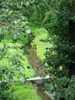 Река Серпейка