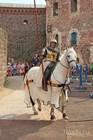 Средневековый фестиваль в замке