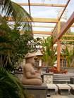 Патио в аэропорту Саньи