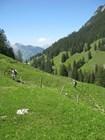 Туристы карабкаются  в гору