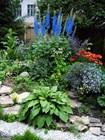 Сад дома Каюма Насыри