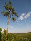 Просторы Пермского края
