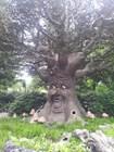 Говорящее дерево