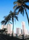 Куба зовет и манит