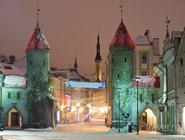 Вируские ворота зимой