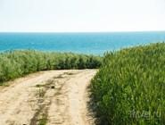 Грунтовая дорога, ведущая вдоль моря от Благи к Бугазской косе