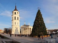 Рождественская ель перед Кафедральным собором