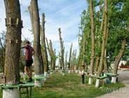 Каждый год в центре поселка открывается веревочный парк для малышей