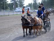 Конные скачки проходят регулярно