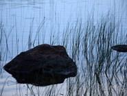 В озерах Реповеси можно купаться и ловить рыбу