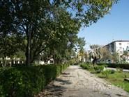 Парк у набережной Сухума