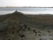 Целебные грязи в Веселовке