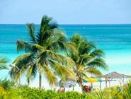Пальмы и океан, Кайо-Коко
