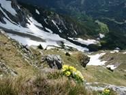 Боковой отрог горы Эчер летом