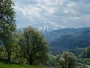 Вид на гору Эчер