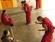 Монахи, собравшись в группы, заучивают молитвы и священные тексты или ведут дебаты