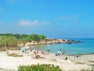 Пляж в середине июля