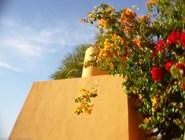 Сады отеля Sheraton в Эль-Гуне