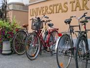 В университет можно и пешком дойти, но многие предпочитают личный транспорт