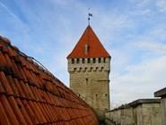 Во время прогулки по замку можно подняться на крышу