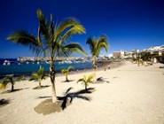 Песчаный пляж на острове Тенерифе