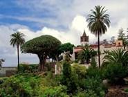 Парк Parque del Drago на острове Тенерифе