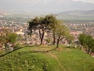 Холмы и современные районы