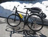 Верный друг велосипедиста