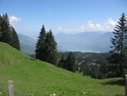 Швейцарские виды