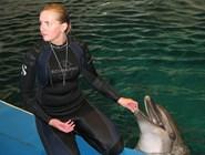 В Дельфинарии на Куршской косе