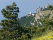 Вид на гору Ай-Петри