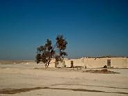 Виды оазиса Фарафра