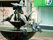 Фонтан с голубями