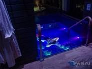 Светомузыкальный бассейн в спа-центре Break Sokos Hotel Koli