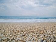 Ракушечный пляж, Флорида