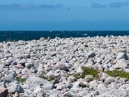 Крупногалечный пляж, Швеция