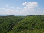 Лесистые холмы Винервальда