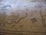 Мозаичный пол базилики