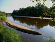 Река в Окском заповеднике