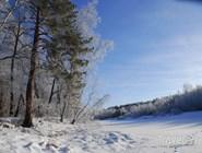 Зима в Окском заповеднике