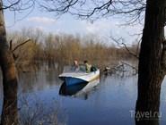 Лодка в Окском заповеднике
