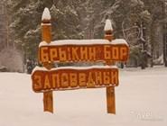 Поселок Брыкин Бор