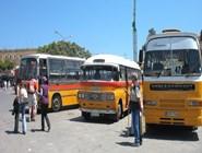 Обычные рейсовые автобусы на Мальте