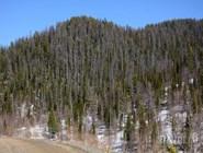 Горы в Хакасии