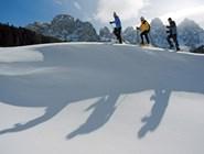Снегоступы популярны на юге Трентино