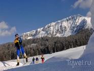На беговых лыжах по Валь-ди-Фьемме