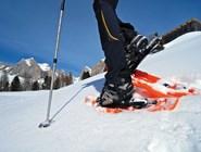 На снегоступах по Фольгарии