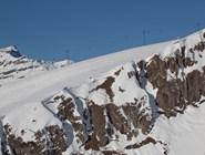 В альпийской зоне