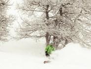 Сноубордеры