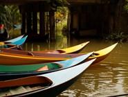Лодки на баньяновой реке